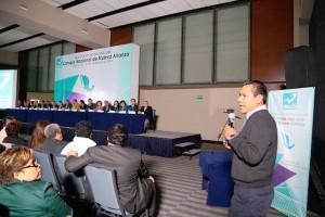 Nueva-Alianza-contendera-solo-en-el-proceso-electoral-2015-en-Oaxaca-y-pais-2