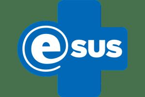 e-sus_webpalestra