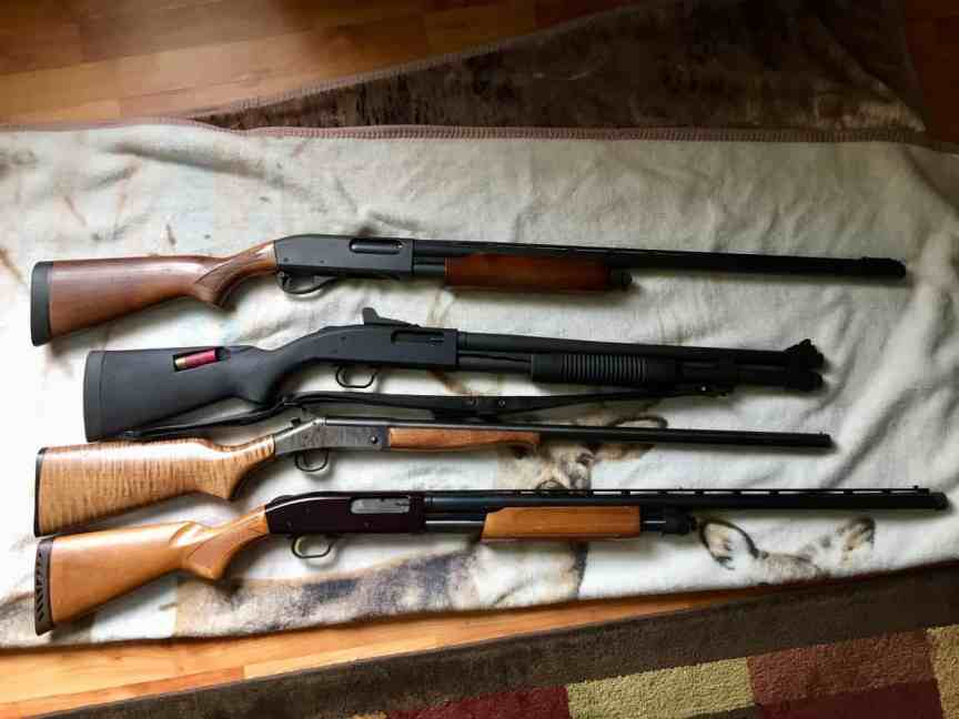 shotguns preppers