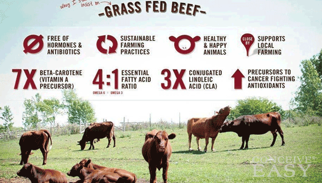 Image result for grass-Fed Beef