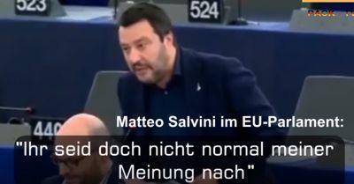 Salvini: Ihr seid doch nicht normal