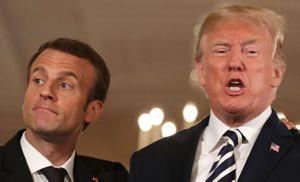 Macron-Äffchen vor von Trump vorgeführt