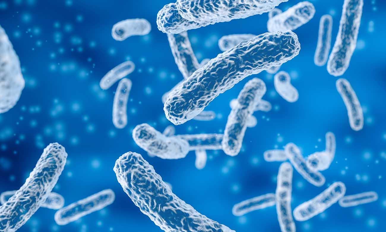 Concept Clim 3000 Illustration bactérie Norme NF T 72-281