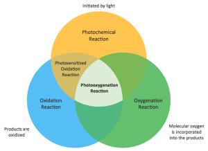 Diagrams  Venn diagram