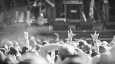 resized_Crowd (2 of 8)-2