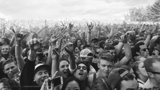 resized_Crowd (4 of 4)-2