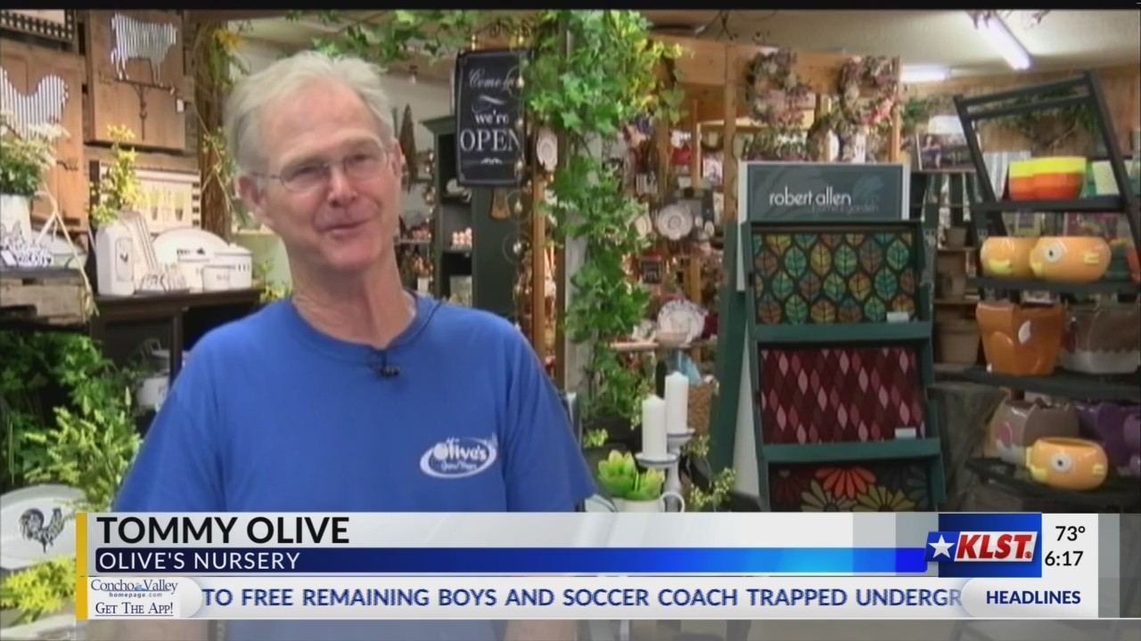 Concho Careers- Olive's Nursery