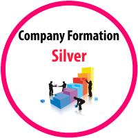 silver company formation