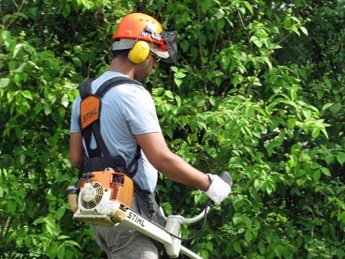 Offerte Di Lavoro Per Giardinieri E Florovivaisti