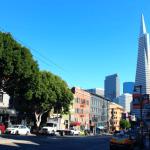 San Francisco. Photo: Connor Gani for Concrete Photography