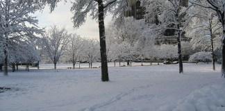 SAD, Photo: winter, wikipedia, Benjamin Hollis
