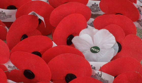 Red poppies: 'symbol of oppression'