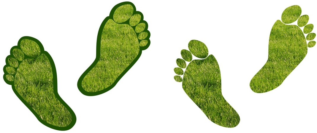 green carbon footprint by merio on pixabay