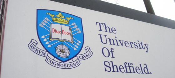 Sheffield's anti-racism plan 'just won't work'