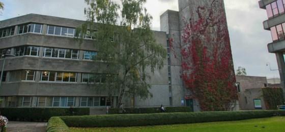 UEA staff lose their jobs because of coronavirus disruption