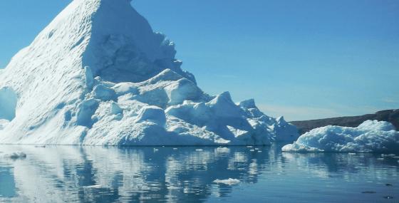 An Arctic Refuge