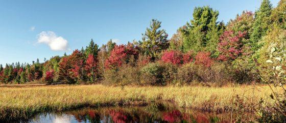 Deadly temperatures break records in Canada