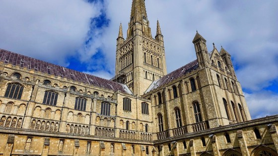 Dippy the Dinosaur visits Norwich Cathedral