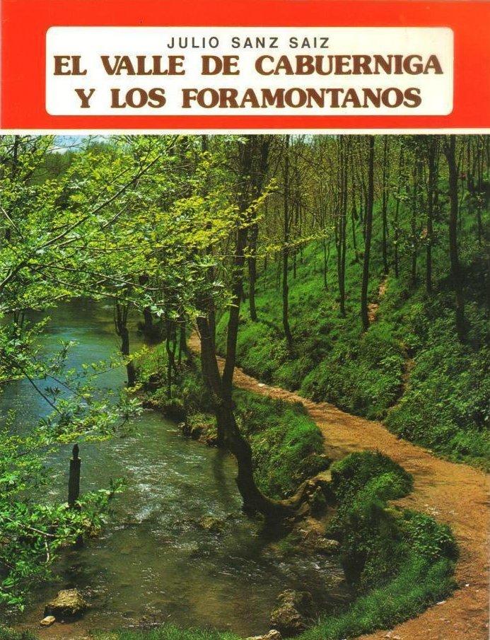 El Valle de Cabuérniga y los foramontanos Book Cover