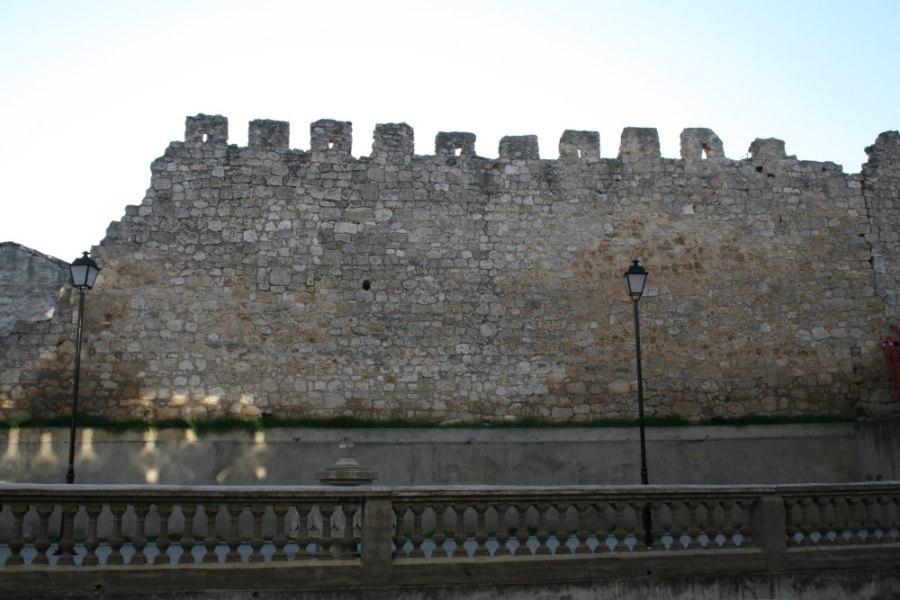 Muralla de Roa