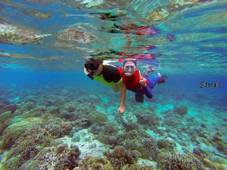 Snorkeling Pulau Menjangan, Bali