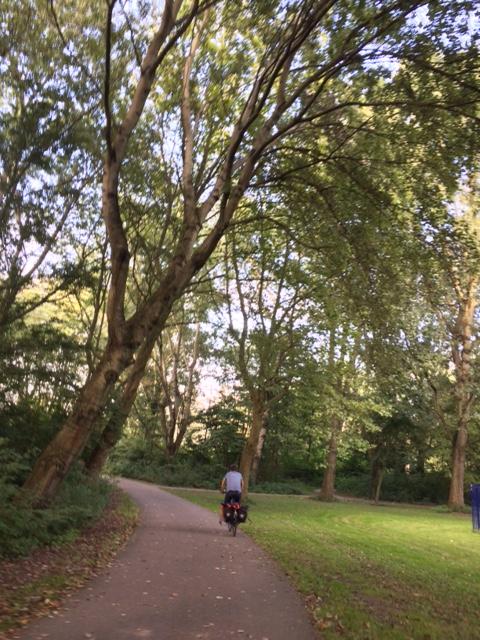 Bersepeda di hutan saat musim gugur