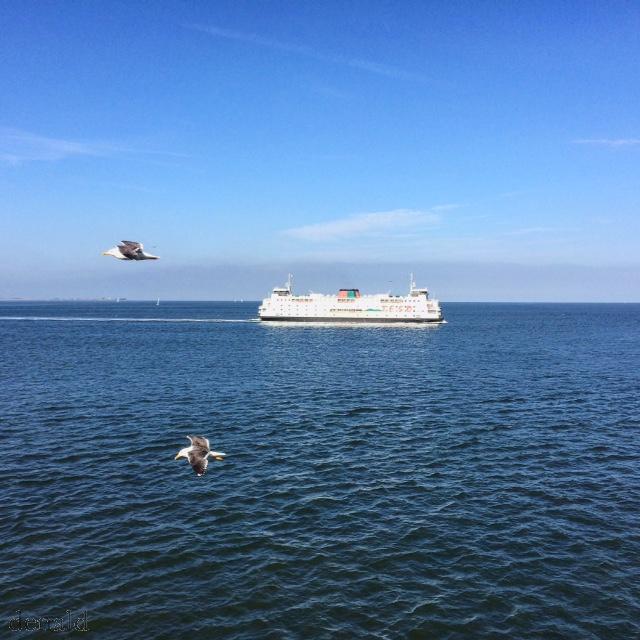 Menyeberang ke Texel