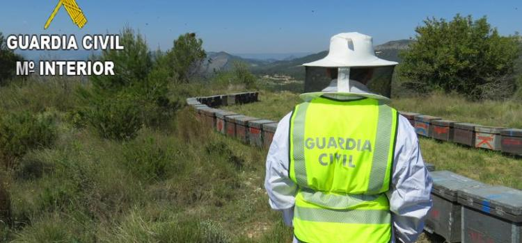 La Guardia Civil de Canals esclarece la sustracción de 60 colmenas