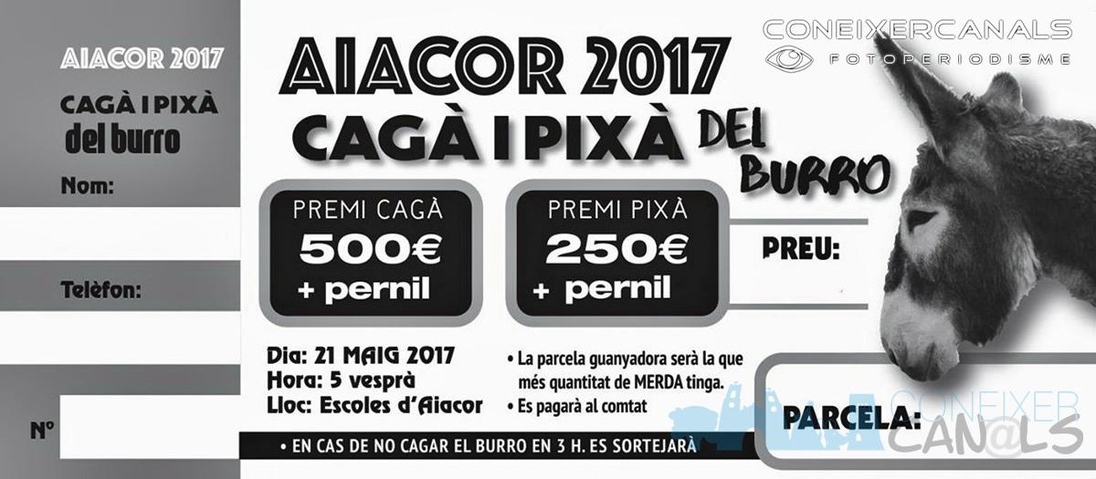 Festes d'Aiacor 2017: Esmortzars populars i Cagà de la Burra