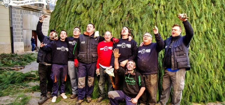 Sant Antoni 2018: Finalitza la Plantá de la Foguera 15 de gener amb les taronges dedicades al Patró