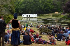 The Lake at Gottwood music festival review on Cone Magazine