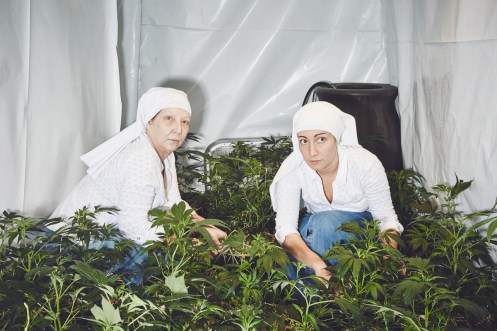 """Sisters in the Valley"" nuns grow cannabis in this photography series"
