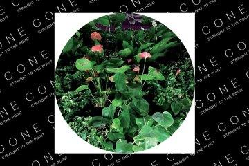 Universo ep Underworld on STEP recordings