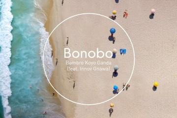 Bonobo music video for Bambro Koyo Ganda on Cone Magazine