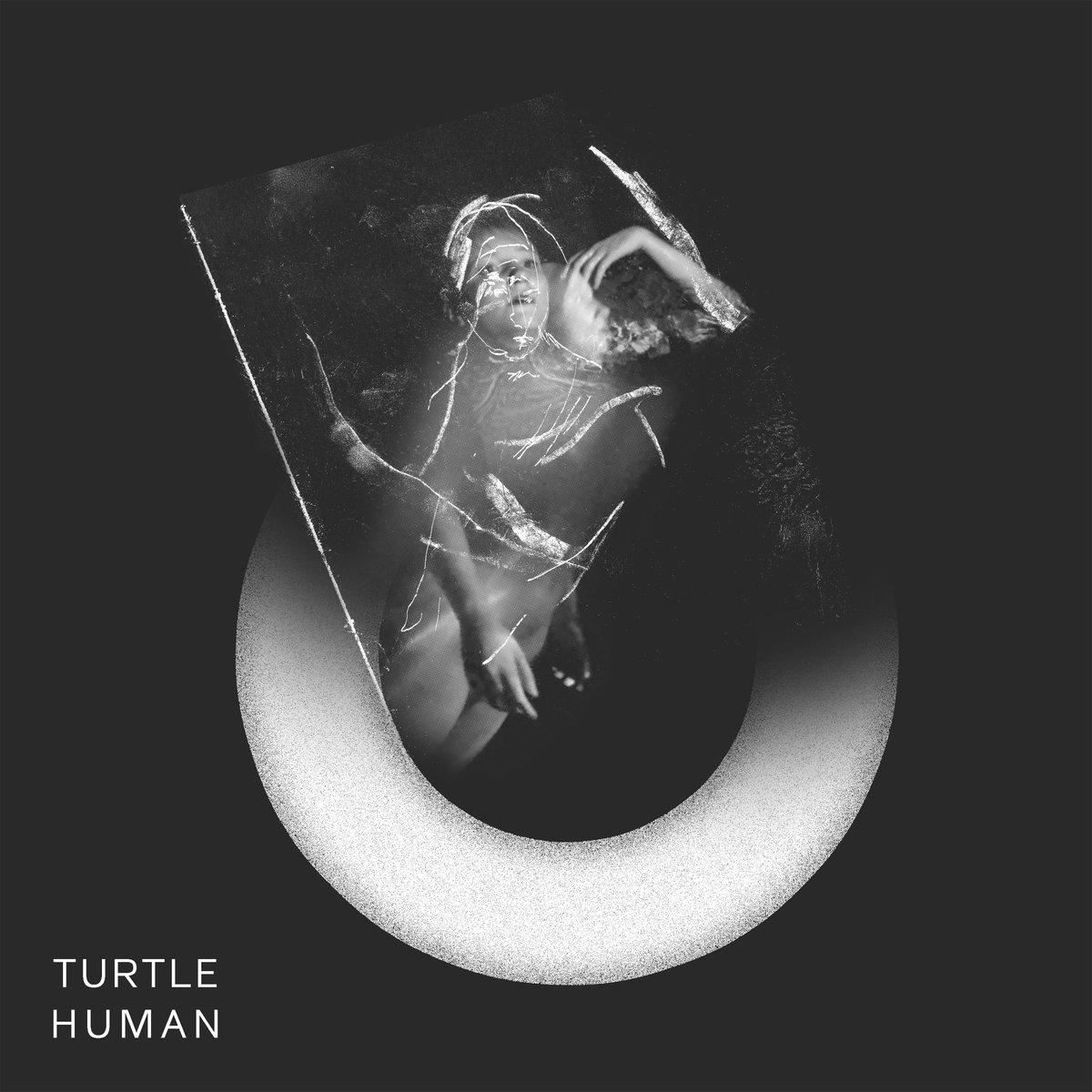 Turtle - Human - Cone Magazine