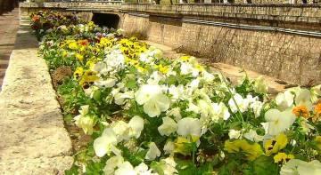 La Primavera ya se siente en Córdoba