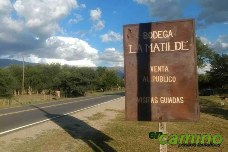 Los caminos del vino en Córdoba