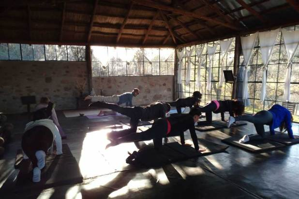 Yoga y Coaching en la naturaleza
