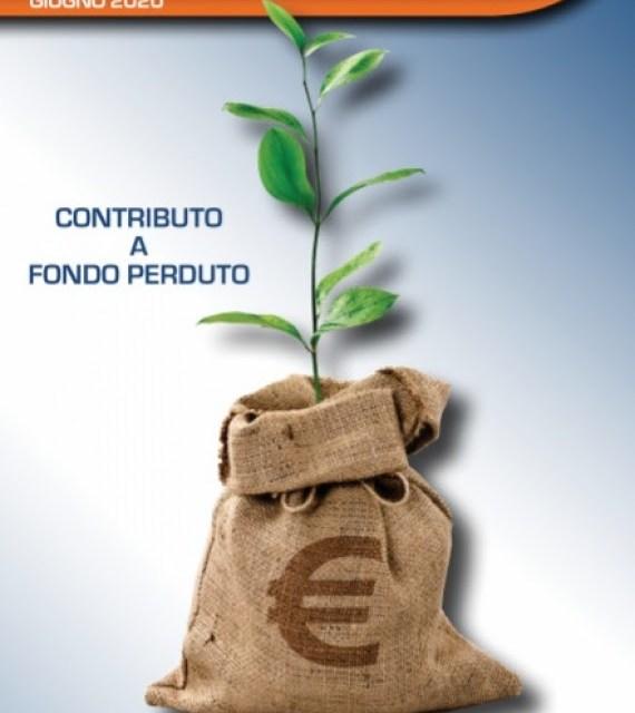 Dal 15 giugno al via le istanze per ottenere contributi a fondo perduto causa Covid-19