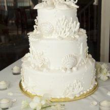 celebration_cake3