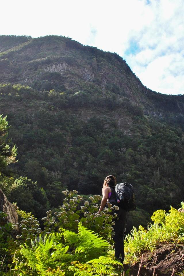 La Gomera Travel