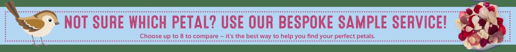 confetti sample service banner