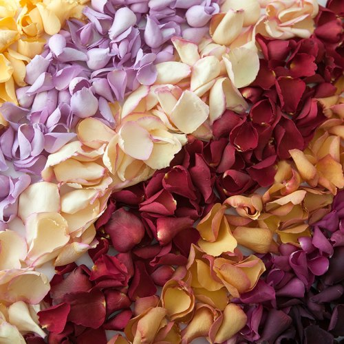 All Large Natural Rose Petal Products