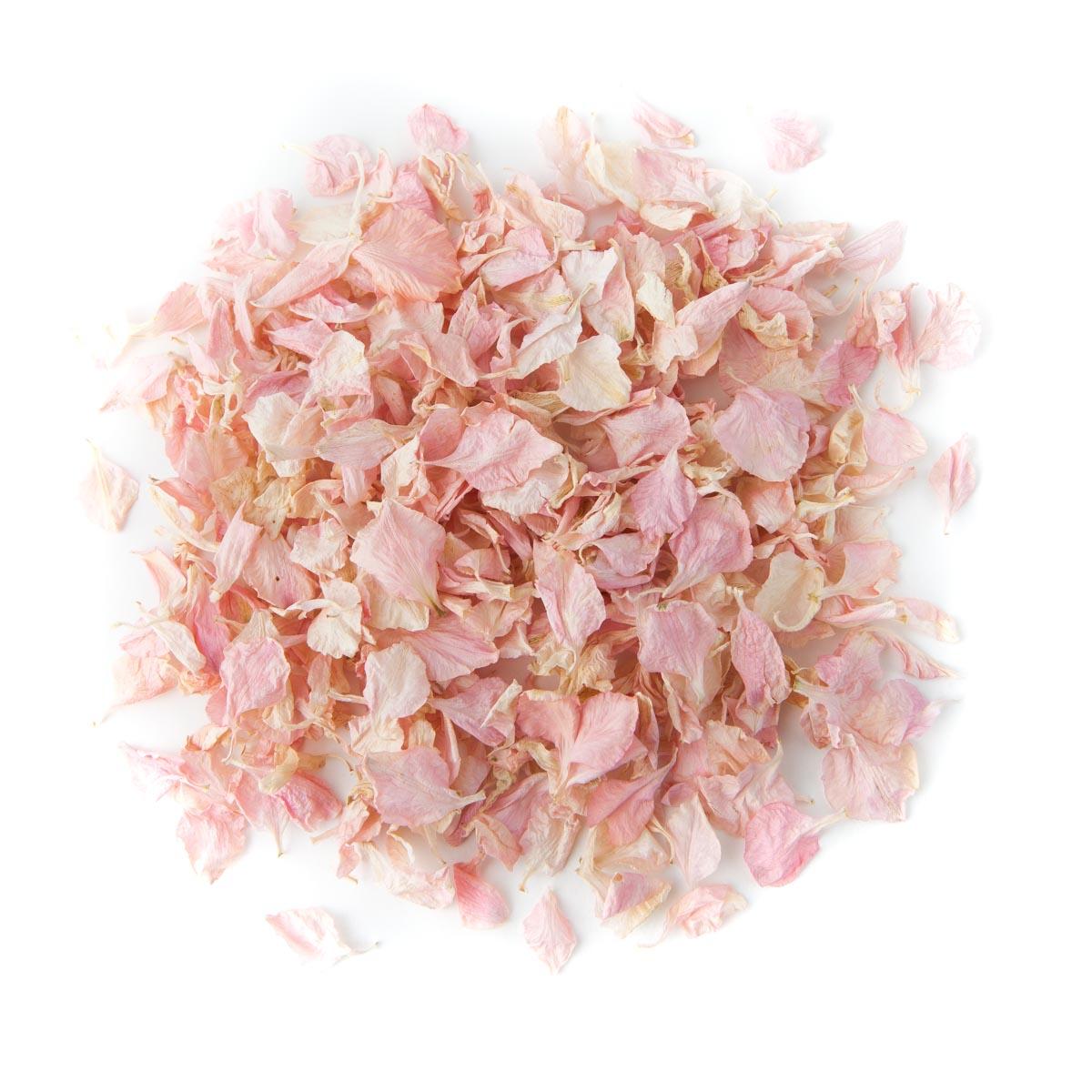 Pale Pink Delphinium Confetti