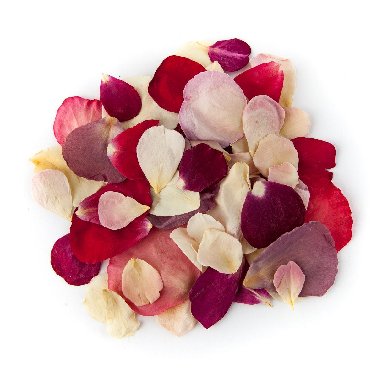 Rainbow Small Natural Rose Petal Confetti