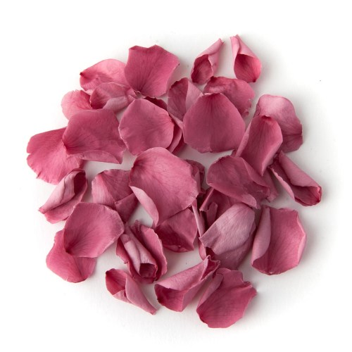 Cherry Blossom Coloured Rose Petal