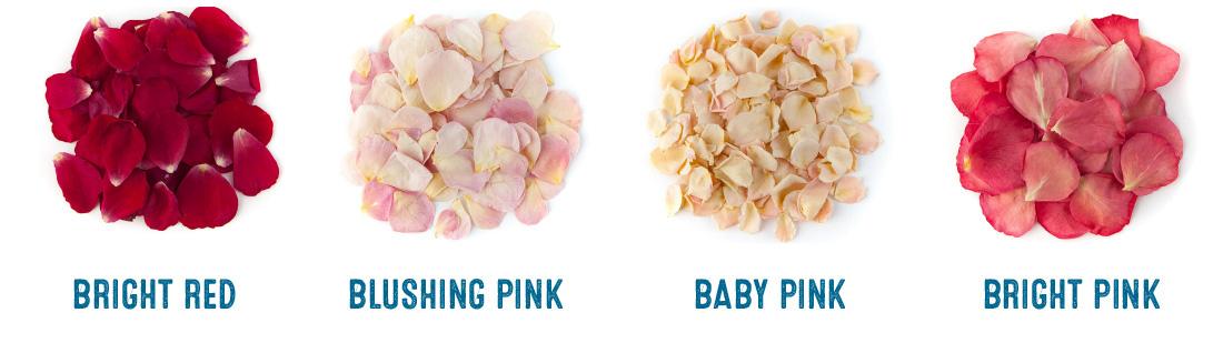 small natural rose petals colour chart