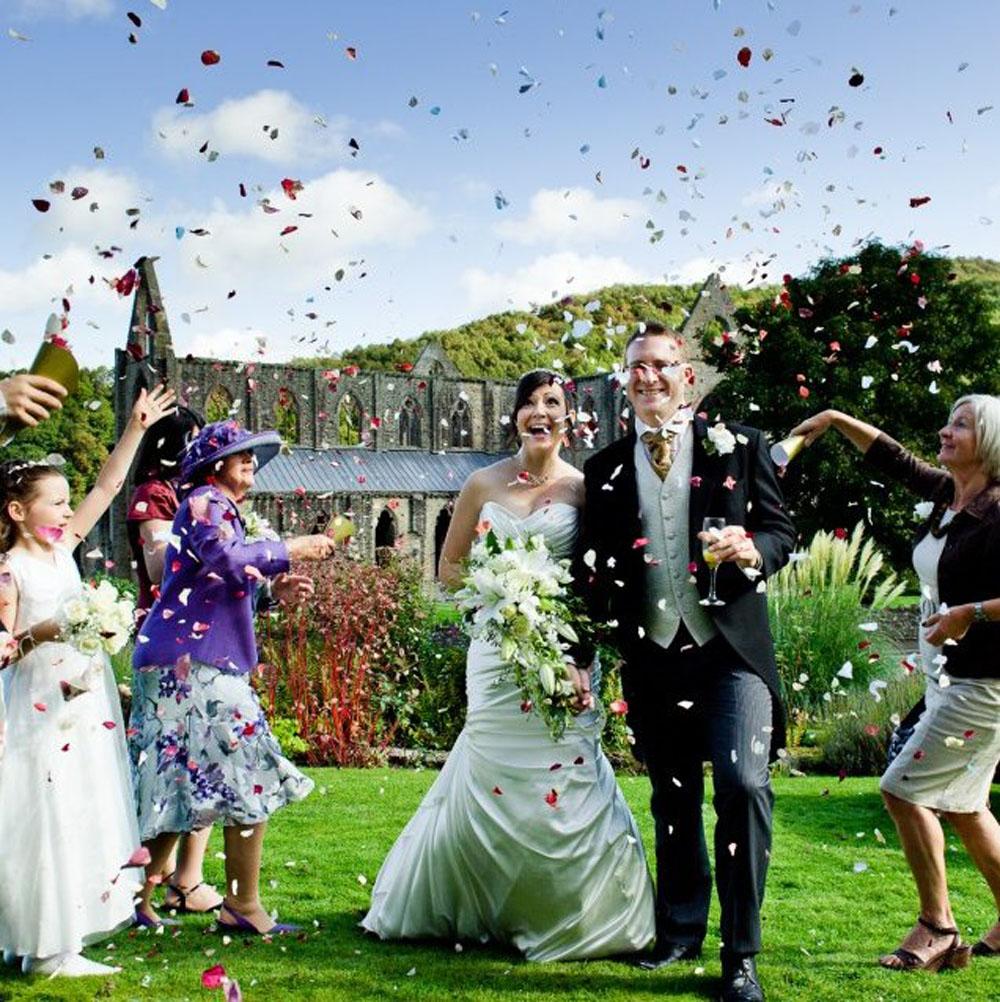 Rose Petals - Confetti Moment at Tintern Abbey