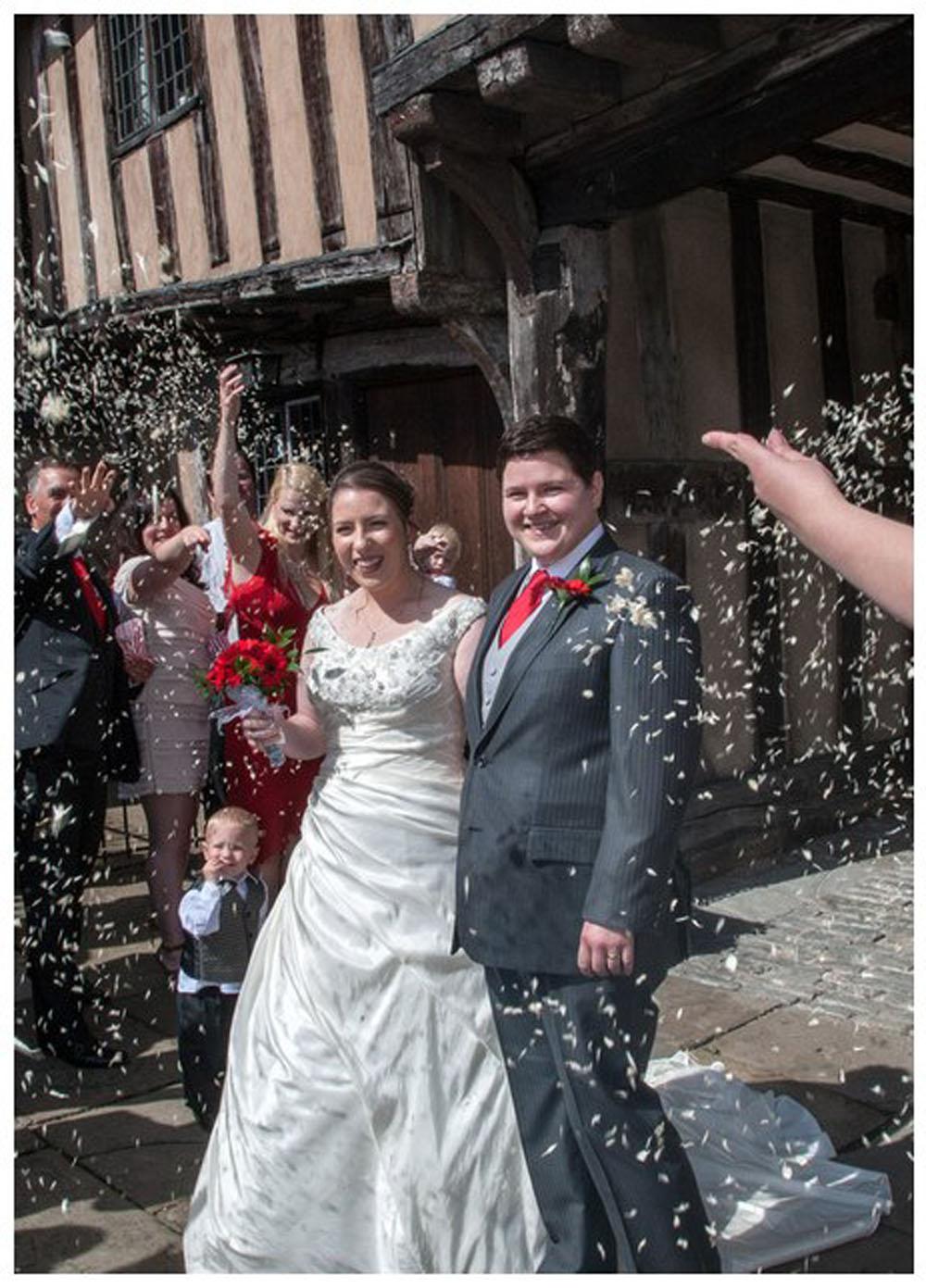 Christmas wedding confetti - ivory delphinium snow