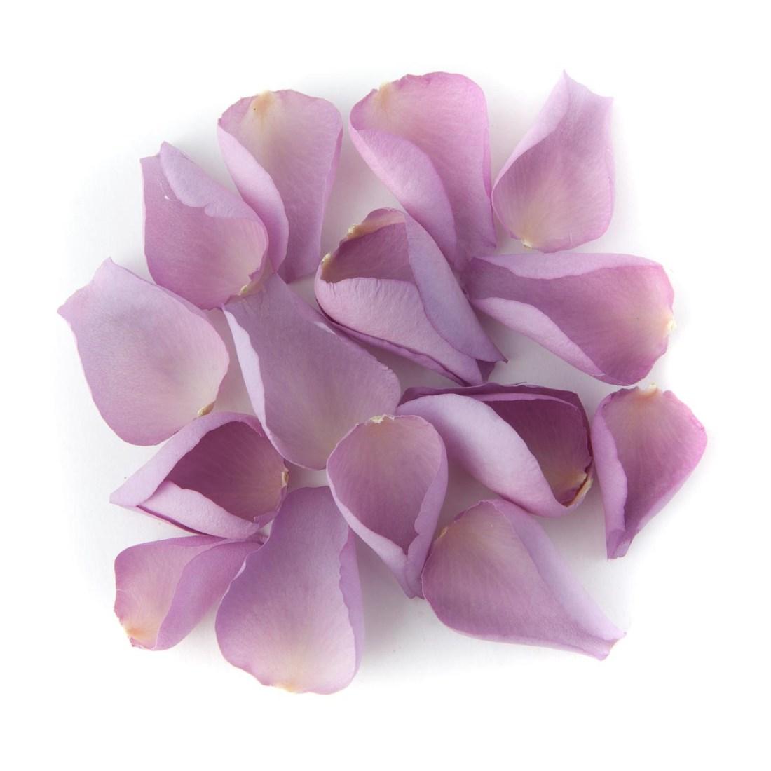Flower petals - wedding aisles and petal pathways: Mauve Large Natural Rose Petals
